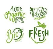 Insieme fresco e bio- della natura pura dell'alimento biologico del pasto illustrazione vettoriale