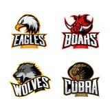 Insieme furioso di concetto di logo di vettore di sport della cobra, del lupo, dell'aquila e del verro isolato su fondo bianco Immagine Stock