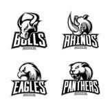 Insieme furioso di concetto di logo di vettore di sport di rinoceronte, del toro, dell'aquila e della pantera isolato su fondo bi Fotografia Stock
