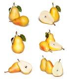 Insieme giallo della pera Immagini Stock