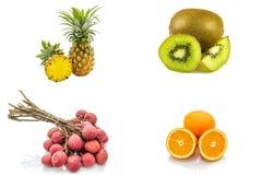 Insieme isolato dei frutti compreso l'agrume arancio del litchi del kiwi dell'ananas su fondo bianco Immagine Stock Libera da Diritti