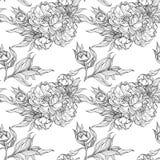Insieme isolato dei germogli e delle foglie della magnolia illustrazione vettoriale