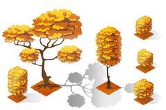 Insieme isometrico della raccolta della foresta delle piante Alberi e pietre di caduta Immagine Stock