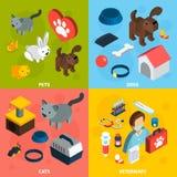 Insieme isometrico veterinario degli animali domestici Fotografia Stock