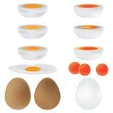 Insieme marrone di bianco dell'uovo Immagini Stock