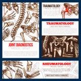 Insieme medico del modello dell'insegna dell'osso, raggi x uniti illustrazione di stock