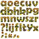 Insieme minuscolo della lettera del fiore Immagini Stock