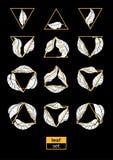 Insieme moderno delle foglie e dei triangoli Disegno di vettore Fotografia Stock Libera da Diritti