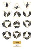 Insieme moderno delle foglie e dei triangoli Disegno di vettore Fotografia Stock