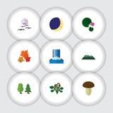 Insieme naturale dell'icona piana di mezza luna, gabbiano, Berry And Other Vector Objects Inoltre include l'uccello, la bacca, Lo Fotografia Stock