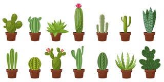 Insieme orizzontale dell'insegna del deserto, cactus verde della stanza Piano, stile del fumetto Fondo di bianco dell'illustrazio Fotografie Stock