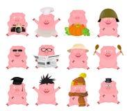 Insieme piacevole dei maiali del fumetto royalty illustrazione gratis