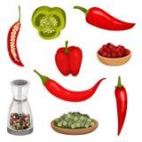 Insieme piano di vettore dei peperoni e dei condimenti freschi Verdura organica Spezia fragrante Cottura degli ingredienti illustrazione vettoriale