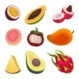 Insieme piano variopinto di vettore dei frutti esotici Alimento naturale e sano Prodotti maturi e saporiti Ingredienti del vegeta royalty illustrazione gratis