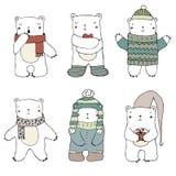 Insieme polare di beara Immagine Stock