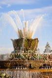 Insieme principale della fontana di pietra del fiore a VDNKh Fotografie Stock