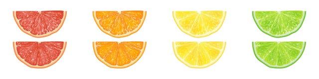 Insieme realistico dell'illustrazione di vettore 3d dell'arancia affettata, grapefru Fotografie Stock Libere da Diritti
