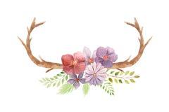 Insieme rustico dell'acquerello dei fiori e delle foglie Fotografie Stock