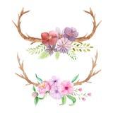 Insieme rustico dell'acquerello dei fiori e delle foglie Immagini Stock