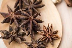 Insieme secco della raccolta dell'erba miscela del seme asciutto della pianta di erbe Fotografia Stock
