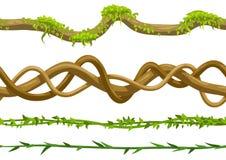 Insieme selvaggio torto dei rami delle liane illustrazione di stock