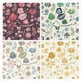 Insieme senza cuciture floreale del modello Il giardino floreale di autunno dell'estate della molla fiorisce la struttura d'annat royalty illustrazione gratis