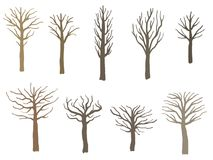 Insieme sterile dell'albero Immagine Stock
