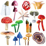 Insieme tossico del fungo Immagini Stock