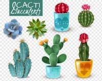 Insieme trasparente realistico succulente del cactus illustrazione vettoriale