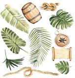 Insieme tropicale dell'illustrazione disegnata a mano dell'acquerello di elem isolato royalty illustrazione gratis