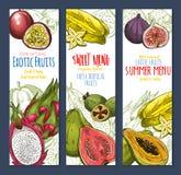 Insieme tropicale dolce dell'insegna di schizzo dell'alimento della frutta esotica royalty illustrazione gratis