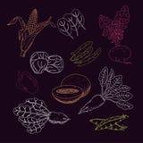 Insieme vegetariano dell'alimento Verdure e frutta Illustrazione di vettore illustrazione di stock