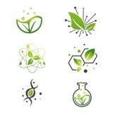 Insieme verde del laboratorio di scienza astratta della foglia del vegano Immagine Stock Libera da Diritti