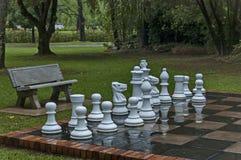 Insiemi di scacchi del giardino con le gocce di acqua dopo la notte piovosa in Sabie Immagini Stock Libere da Diritti