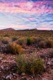 Tramonto rosa della montagna Fotografia Stock