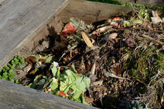 Insight into composter royalty free stock photography