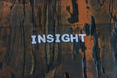 Insight written in white letters. Insight written in white lettering on weathered dark wood Stock Photos