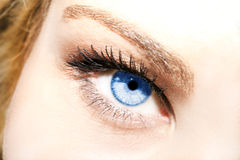 Insightful look on a blue eyes Royalty Free Stock Images