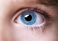 Insightful look blue eyes boy Royalty Free Stock Photos