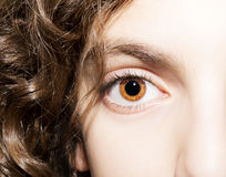 An insightful look on a brown eye.  Royalty Free Stock Photography