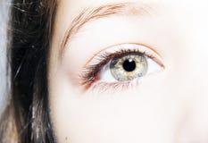 Insightful look eyes Stock Photography