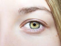 Insightful look eyes Royalty Free Stock Image