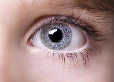Insightful look eyes boy Royalty Free Stock Images