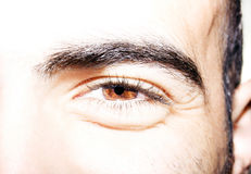 Insightful look eyes. An insightful look on brown colored eyes Royalty Free Stock Photography