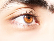Insightful look eyes. An insightful look on brown colored eyes Stock Photos