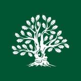 Insigne énorme et sacré de logo de silhouette de chêne d'isolement sur le fond vert illustration de vecteur