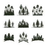 Insigne de voyage d'arbre de silhouette extérieure de noir, cèdre de branche de sapin de pin de dessus et abrégé sur naturels con Photo libre de droits