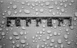 Insigne humide de Ferrari Image stock