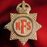 Insigne national de pompiers Photo libre de droits