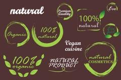Insigne naturel, bio, organique illustration libre de droits